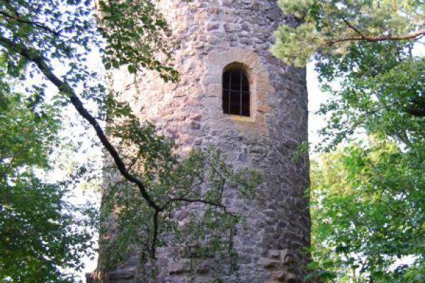 goslar-steinberg-0811-40930F21D5BB-8796-5A66-BED9-7AD9F76F6D6E.jpg
